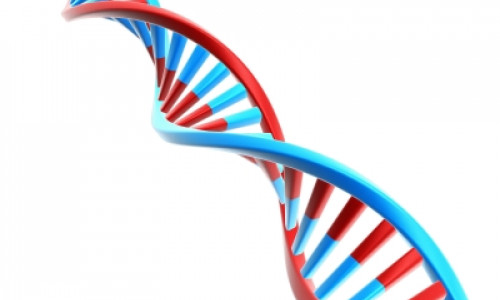 What Is Genetic Testing & What Is It Used For?